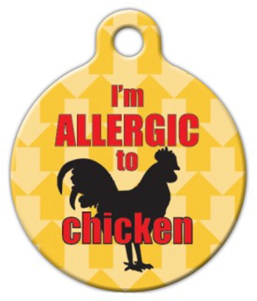 Dog Tag Art I'm Allergic to Chicken Pet ID Dog Tag