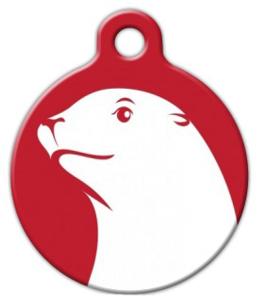 Dog Tag Art Sea Lion in Red Pet ID Dog Tag