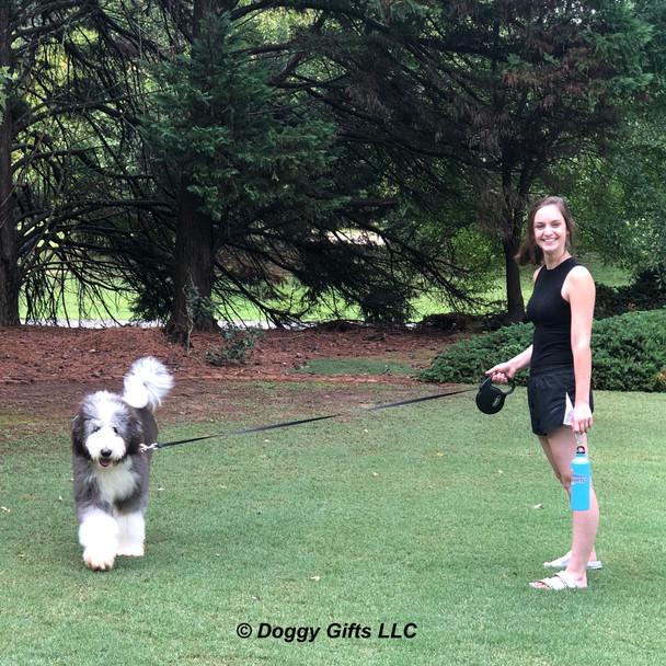 Henrythesheepadoodle and Mom Walking With Coastal Power Walker Retractable Dog Leash.