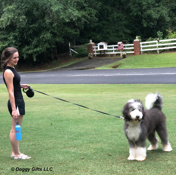 Henrythesheepadoodle and Mom Taking a Walk With Power Walker Retractable Dog Leash