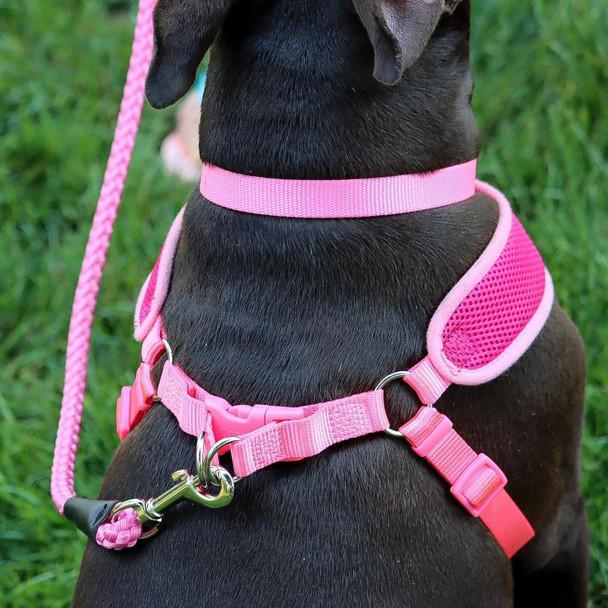 Coastal Pet Comfort Soft Wrap Adjustable Dog Harness detail