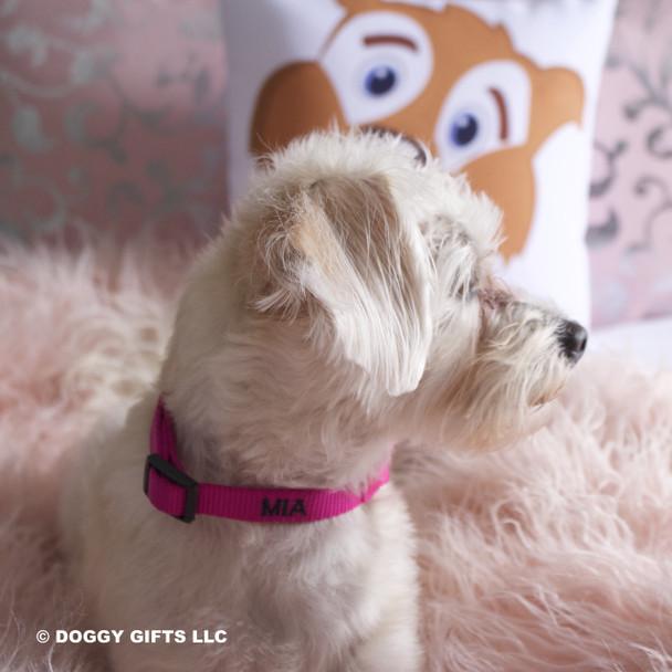 Mia loves her Coastal Pet Martingale Adjustable Nylon Dog Collar Personalized (6407E)