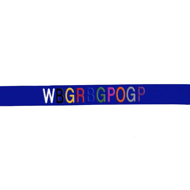 Coastal Pet Loops 2 Double Handle Nylon Dog Leash Personalized Embroidery Sample On Blue Nylon