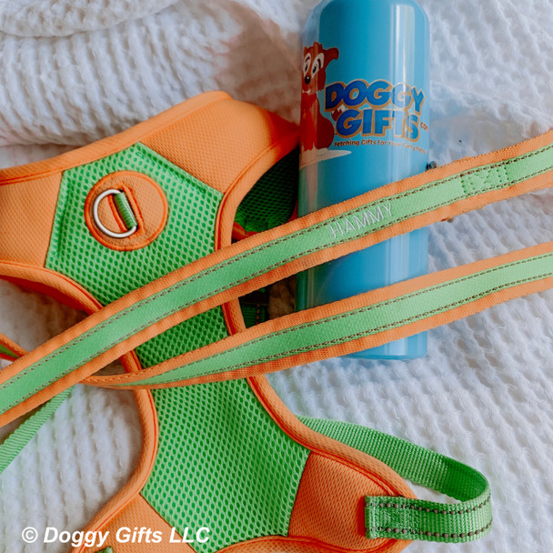 Coastal Pet Pro Reflective harness and personalized leash close up
