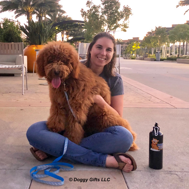 Charlie Dood and Mom Having a Fun Evening Wearing Lazer Brite Reflective Dog Collar and Leash