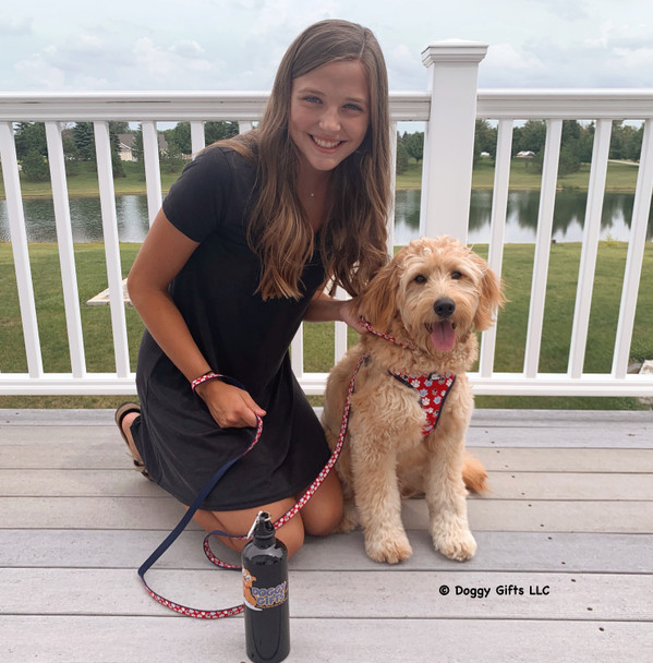 Coastal Pet Ribbon dog leash, collar and harness makes a beautiful matching set