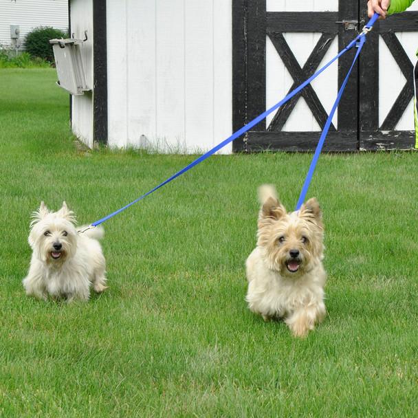 Coastal Pet 2 Dog Walker Tangle Free Nylon Dog Leash