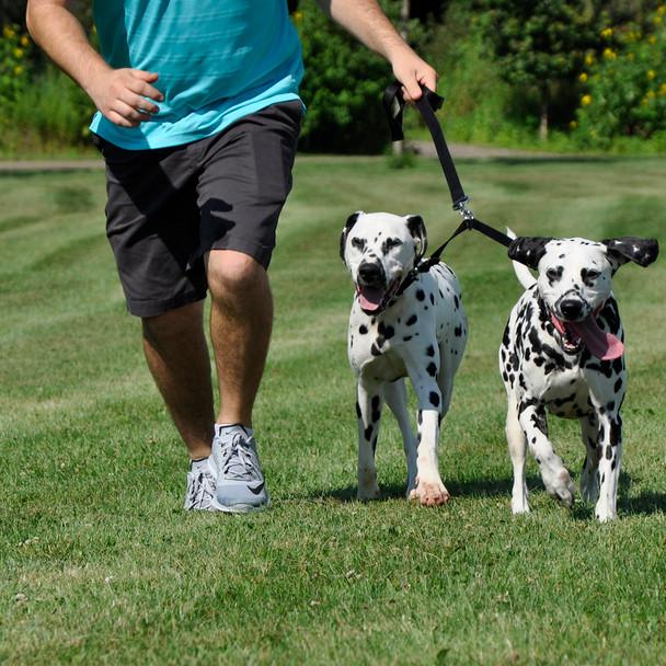 Coastal Pet 2 Dog Adjustable Nylon Coupler With Dogs Black