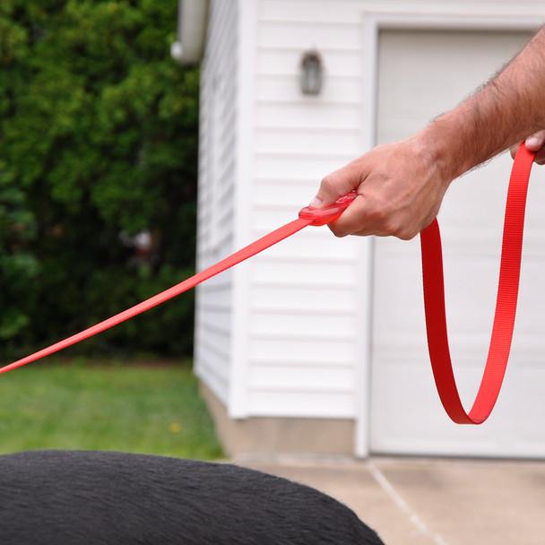 Coastal Pet Insta Grip Control Handle Nylon Dog Leash Demo