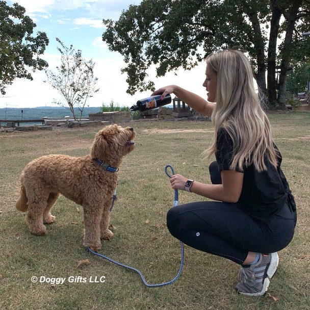 Sammy and His Mom at the park wearing K9 Explorer Dog Collar and Rope Leash