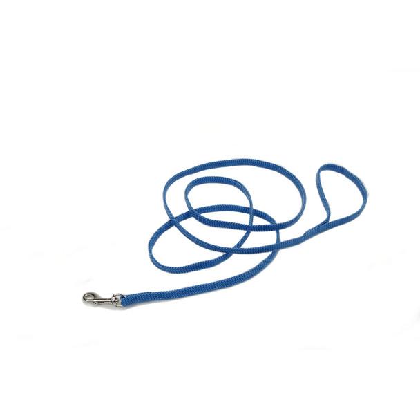Coastal Pet Sunburst® Nylon Dog Leash