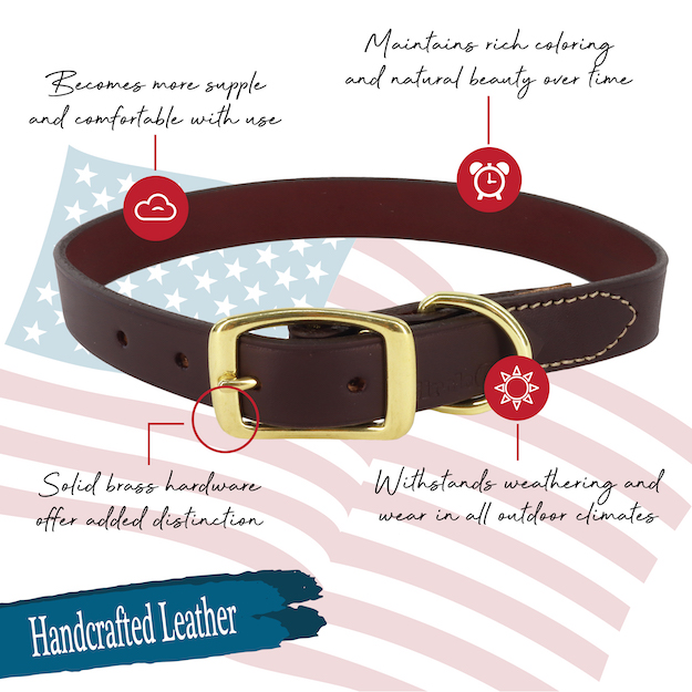 circle-t-latigo-leather-town-dog-collar-with-solid-brass-hardware-features.jpg