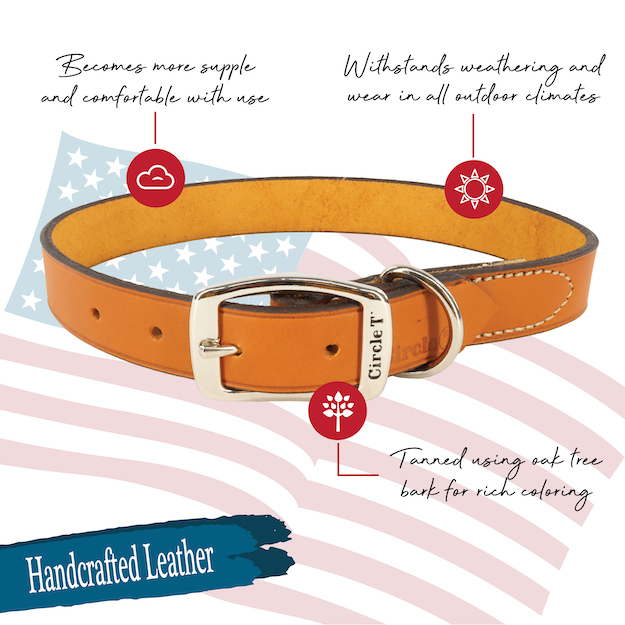 circle-t-oak-tanned-leather-town-dog-collar-features.jpg