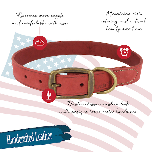 circle-t-rustic-leather-town-dog-collar-features.jpg