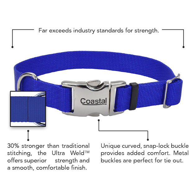 coastal-adjustable-dog-collar-with-metal-buckle-features.jpg