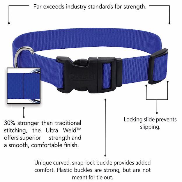 coastal-adjustable-dog-collar-with-plastic-buckle-features.jpg
