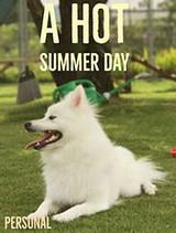 A hot summer day in Miyazaki