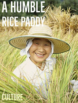 Fairness, Equality and the Humble Rice Paddy