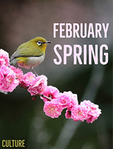 February 4th Marks the Arrival of Spring In Japan
