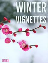 Winter Haiku Poems