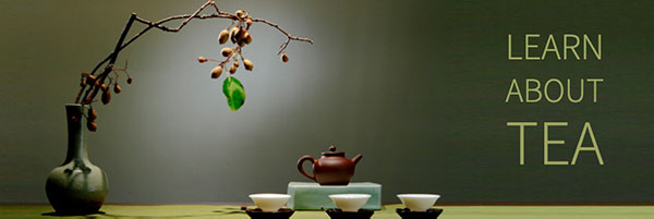 about-green-and-herbal-teas-600.jpg