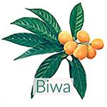 biwa-loquat-leaves-150.jpg