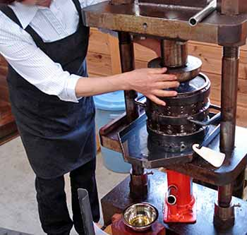 Cold-pressing camellia oil by hand
