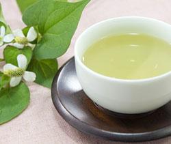 dokudami-japanese-detox-tea-250.jpg