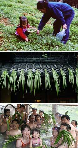 japanMay 5 is kodomo-no-hi (Children's Day), ayame-no-hi (Day of Irises) and tango-no-sekku (Double-Fifth)traditions-of-may-akodomo-no-hi-ayame-no-hi-250.jpg