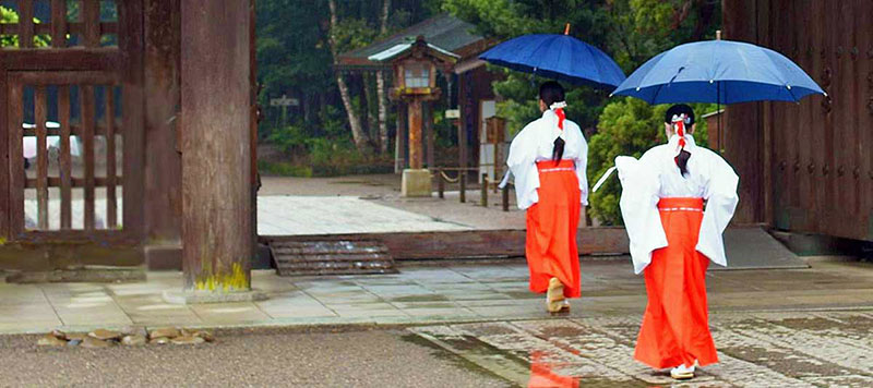 Japanese priestess ladies in Miyazaki Shrine