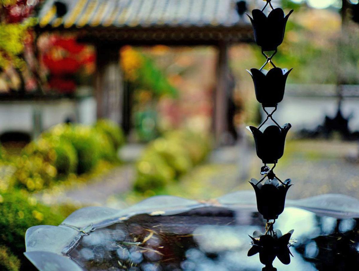 Japanese rain chain in a garden