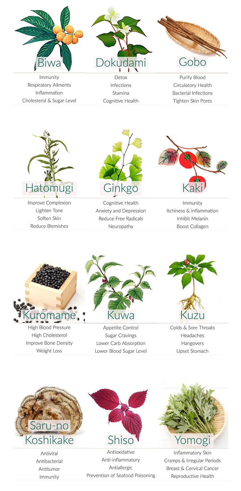 Japanese herbal teas