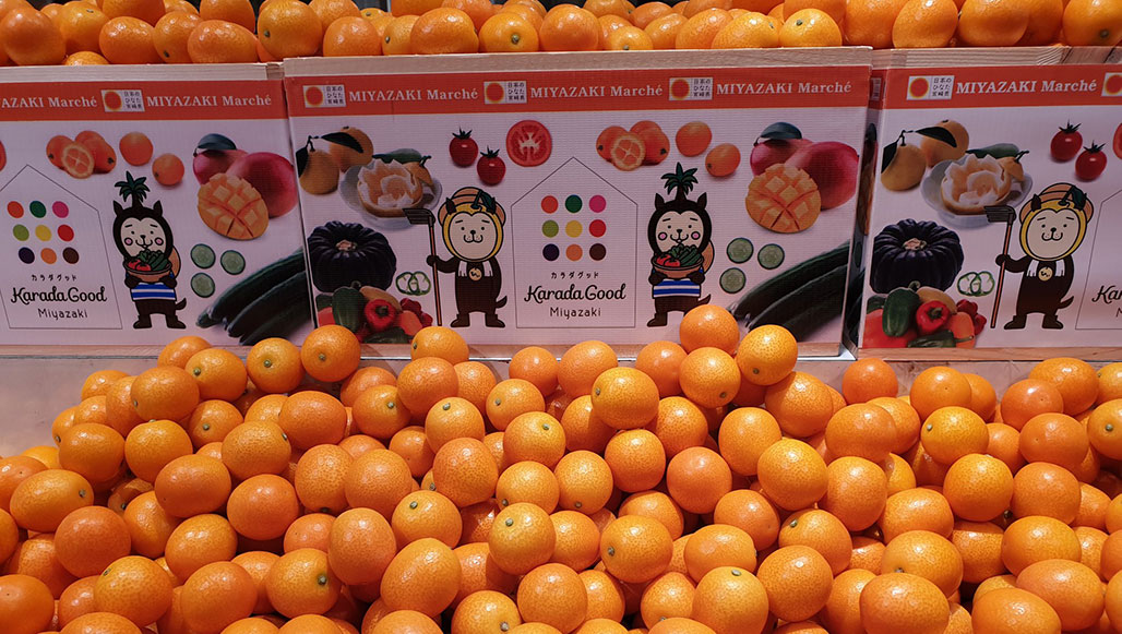 Kumquats for sale in Japanese store