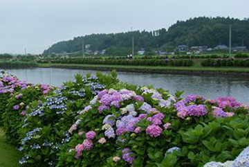 banks of Oyodu River running through Miyazaki