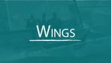B14 Wings