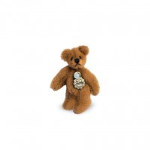 Teddy Golden Brown