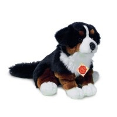 Bernard Dog