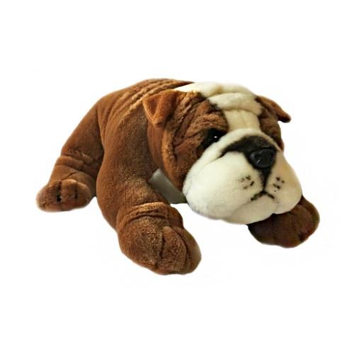 Bocchetta Boston Bulldog