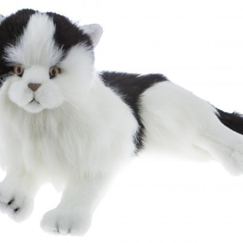 Bocchetta European Cat Woodrow