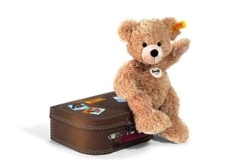 Fynn in Brown Suitcase