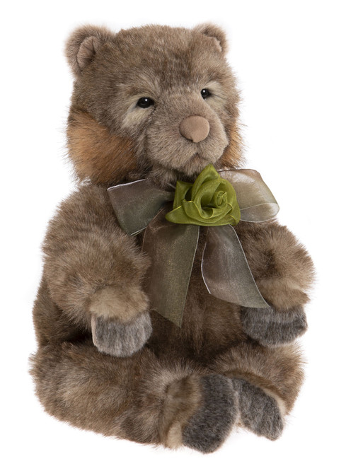 Charlie Bears Darwin