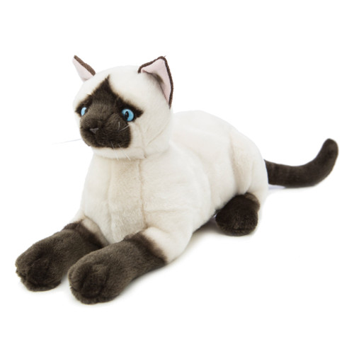 Bocchetta Amelia Siamese Cat