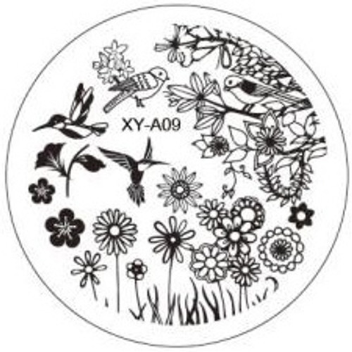 XY-A09 Image Plate