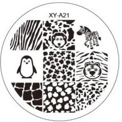 XY-A21 Image Plate