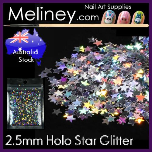 Silver holo stars nail glitter