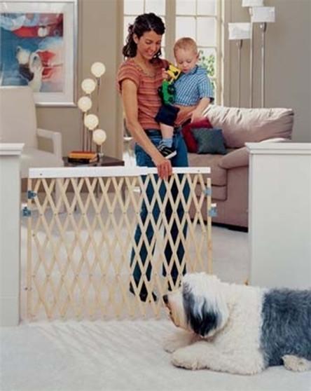 Expandable Swing Gate