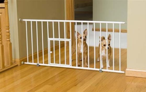Mini Gate with Pet Door
