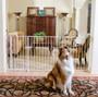 Extra Tall Maxi Walk-Thru Pet Gate with Pet Door