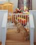 Stairway Swing Gate