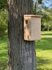 Wakefield Premium Squirrel House Nesting Box